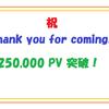ありがとう25万アクセス!