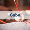 TOEIC900点を超えを実現した勉強法【英会話】〜Gaba〜
