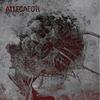 ALLEGAEON 新曲「Exothermic Chemical Combustion」のプレイスルービデオを公開