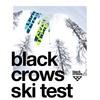 試乗記 BLACKCROWS camox freebird