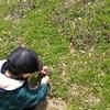 5歳児と過ごす春休み こども園について