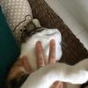 【愛猫日記】毎日アンヌさん#48