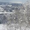 【北海道旭川市】カムイスキーリンクス~格安で混雑のない観光客でも楽しめるゲレンデ~