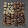 産地別 コーヒー豆の特徴