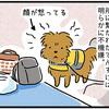 【犬漫画】吉野川上流で川遊び2