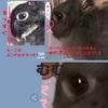 生クリーム・揚げ物が無理【ミニマリストの食】【偏食】【ダイエット】