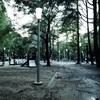 【写真】スナップショット(2017/8/8)靱公園その1