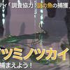 【MHWI】ワダツミノツカイの場所と捕まえ方!重要バウンティ「調査協力:謎の魚の捕獲」
