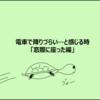 【日常漫画】~カメタ艇が電車で降りづらい…と感じる時「窓際に座った編」~