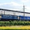 第1395列車 「 甲171 JR貨物 EF210-326の甲種輸送を狙う 」