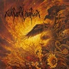 Nokturnal Mortum / Verity