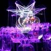 【イベント情報】アートアクアリウム2017@東京(2017年7月7日~9月24日)