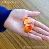 ちなちゃんの「連バラ」と、折り紙便利ネタ 〜コピー用紙を2:1カット術〜