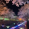 【韓国旅行記1人旅2019年4月】片道2500円!!エアプサンの格安チケットで鎮海(チネ)の桜まつりへ