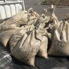 水稲の種もみ浸種完了と播種の準備