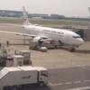 学生必見第二弾! JAL国内線に約3,000円で乗る方法