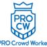 クラウドワークスでプロクラウドワーカーに認定される4のコツ