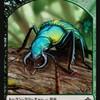昆虫飼育記  生きてるトークン≪幼虫画像有り≫