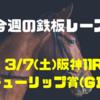 【今週の鉄板レース(的中!)】3/7(土) 阪神11R チューリップ賞(GⅡ)