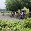 【ロードバイク】レース: 2019 JCRCロードシリーズ第3戦 in 下総運動公園