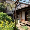 夏になると糸瓜が見られる「子規庵」台東区根岸