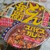 日清食品のどん兵衛の新商品「カツオとチキンのWだしスパイスカレー」はパンチが効いていてます!!