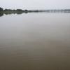 大雨後、濁りの紀ノ川