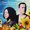 TEARS FOR FEARS/Mad World: The Collection