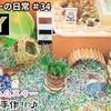 【YouTube 投稿】DIY★露天風呂付きリゾート♪キンクマがファミリーになったのでお家づくり♪