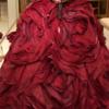 Hatsuko Endo Weddings♥️ ウエディングドレス選びレポ