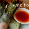 上野駅すぐ! 本格タイ料理が食べられる『マンゴツリーカフェ』