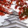 紅葉の会津 鶴ヶ城(会津若松城)をSONYα6400片手に散歩してきました..!