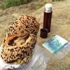 【鎌倉・天園】ウルトラライトハイキングでコーヒーと読書