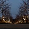 【一眼レフ】三浦半島から鎌倉にかけてドライブを楽しむ