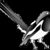 一人暮らしの人も鳥貴族を利用するのは超オススメ