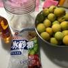 梅シロップを作りました。