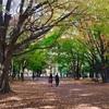 札幌まち歩き#6(円山公園&北海道神宮など)
