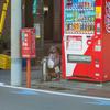 12月下旬:オールドレンズSuper-Takumar 55mm F1.8でお写んぽ。