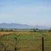 ミャンマーの田舎と暮らし