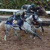 有馬記念2012の注目馬