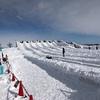 福岡から北海道(札幌、小樽)へ3泊4日観光旅行のモデルコース!雪まつりや蟹料理など最高!