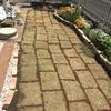 芝張りDIY。庭の大改造、花壇の次は家族で芝張り。春のガーデニング③