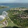 【フラワードーム/クラウドフォレスト】魅惑のシンガポールの旅vol.3【限りある自然 限りある資源】