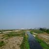 重信川中流探鳥会 2013年7月