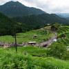 熊野市にある丸山千枚田の虫送りを見に行ってきました