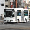 鹿児島交通(元江ノ電バス) 1382号車