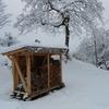 今シーズンやっとの積雪 ⛄