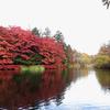 秋の軽井沢に行ってきた その2