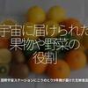 957食目「宇宙に届けられた果物や野菜の役割」国際宇宙ステーションにこうのとり9号機が届けた生鮮食品