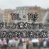 【保存版】TDL・TDS夏のびしょ濡れショー防水対策レベル別に徹底解説!